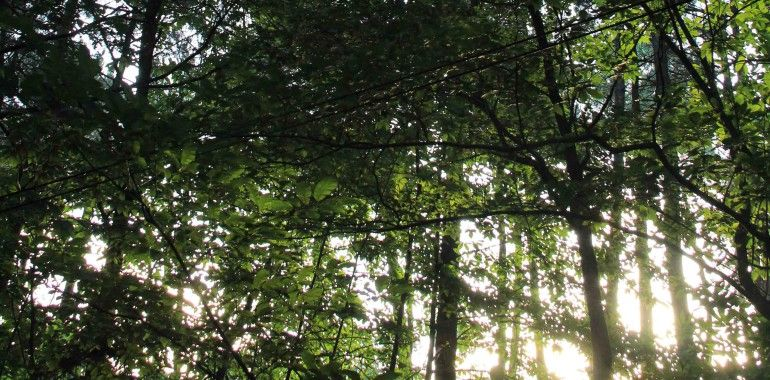 Espaces naturels