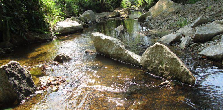 cours d'eau